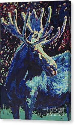 North American Wildlife Canvas Print - JR by Patricia A Griffin