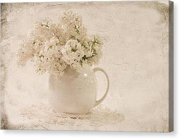 Jug Of White Lilacs Canvas Print