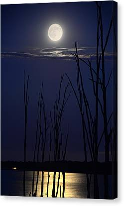 July 2014 Super Moon Canvas Print by Raymond Salani III