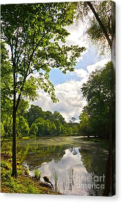 July Fourth Duck Pond With Goose Canvas Print by Byron Varvarigos