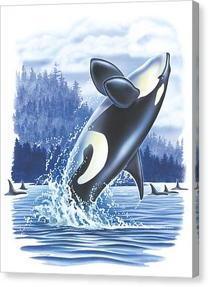 Jumping Orca Canvas Print by JQ Licensing