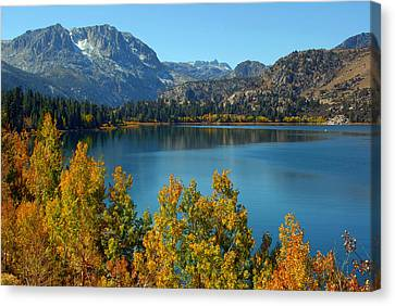 June Lake Blues And Golds Canvas Print by Lynn Bauer