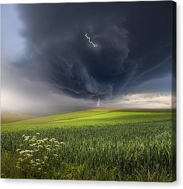 June Storm Canvas Print by Franz Schumacher