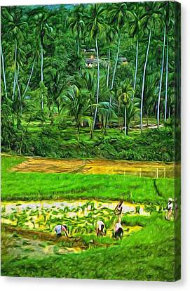 Jungle Homestead - Paint  Canvas Print by Steve Harrington