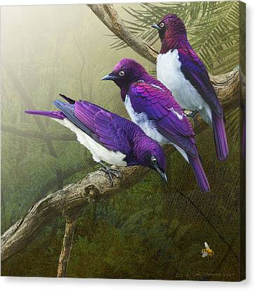 Jungle Mist -amethyst Starlings   Canvas Print by R christopher Vest