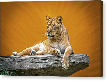 Jungle Queen Canvas Print by Marion Johnson