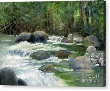Jungle Stream Canvas Print by Sharon Freeman