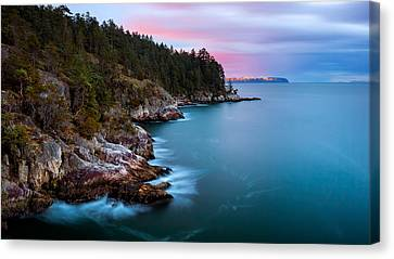 Juniper Point Canvas Print by Alexis Birkill