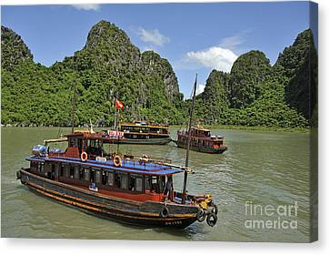Junk Boats In Halong Bay Canvas Print by Sami Sarkis