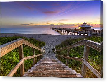 Juno Beach   Canvas Print by Debra and Dave Vanderlaan