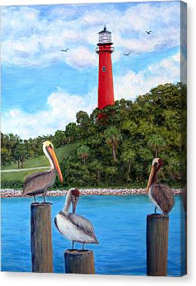 Jupiter Inlet Pelicans Canvas Print by Fran Brooks