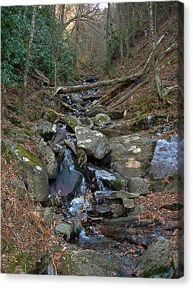 Just A Creek Canvas Print by Skip Willits