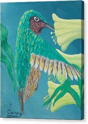 Just A Hummingbird Canvas Print