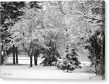 Just After A Snowfall Canvas Print by Mary Machare