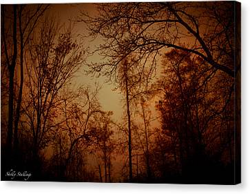 Canvas Print featuring the photograph Just After Sunset by Shelly Stallings