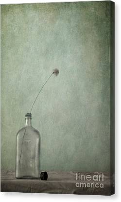 Just An Old Bottle And Its Cap Canvas Print by Priska Wettstein