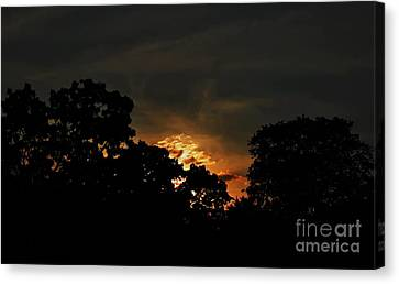Just Before Dark Canvas Print by Michelle Meenawong