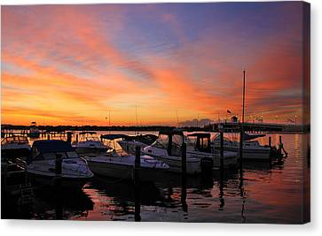 Just Before Dawn Canvas Print by Roger Becker