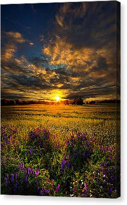 Just Believe Canvas Print by Phil Koch