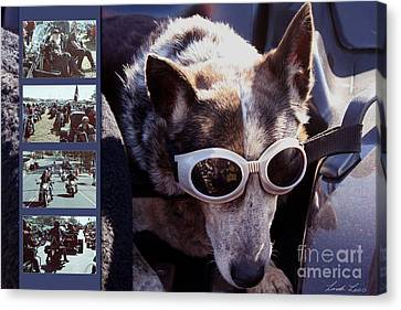 Just Call Me Dog Canvas Print by Linda Lees