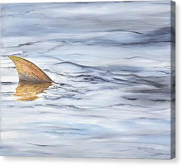 Finning Quietly Canvas Print by Deborah A Cordova