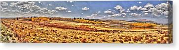 Just North Of Fairplay Colorado Canvas Print by Lanita Williams