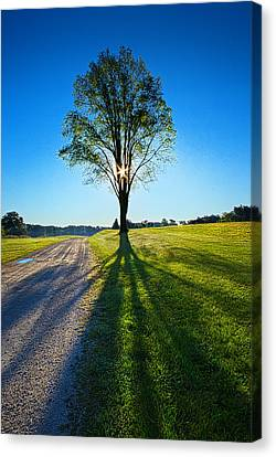 Just Over The Horizon Canvas Print by Phil Koch