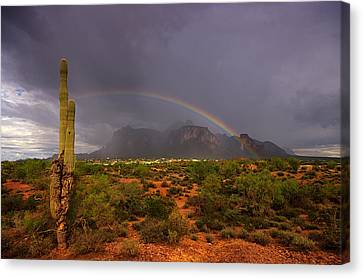 Just Over The Rainbow  Canvas Print