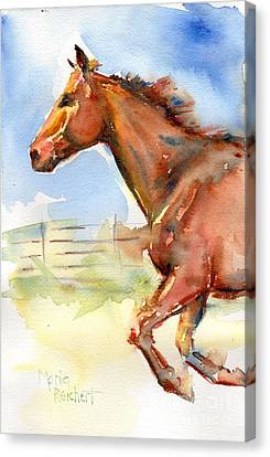 Chestnut Horse Canvas Print - Horse Running Just Passing Through by Maria's Watercolor