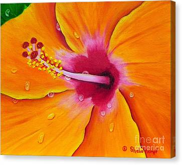 Canvas Print featuring the painting Just Peachy - Hibiscus Flower  by Shelia Kempf