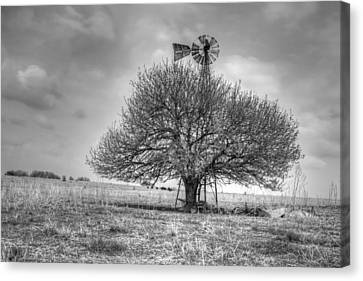 Just Plain Kansas Canvas Print by JC Findley