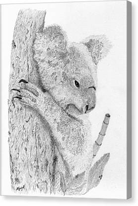Koala Canvas Print - Just Relaxed by Wendy Brunell