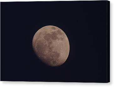 Just The Moon Canvas Print by Jeff Swan