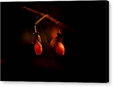 Just Two Canvas Print by Susan Capuano