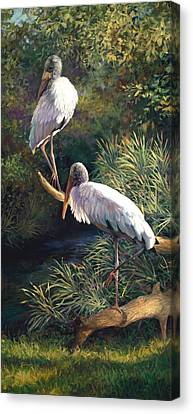 Juvenile Woodstorks Canvas Print by Laurie Hein