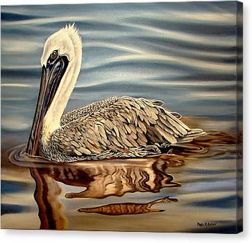Canvas Print featuring the painting Juvenile Pelican by Phyllis Beiser