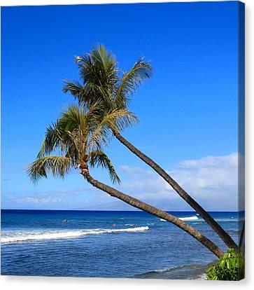 Kaanapali Hawaii Canvas Print by DJ Florek