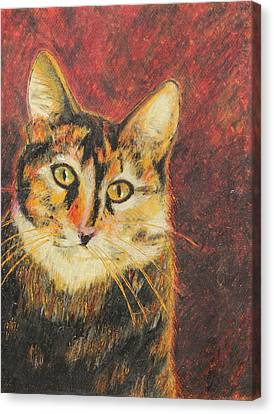 Kaco Canvas Print by Jeanne Fischer
