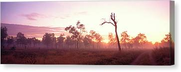 Kakadu National Park Northern Territory Canvas Print