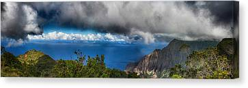 Kalalau Outlook  Canvas Print by Douglas Barnard