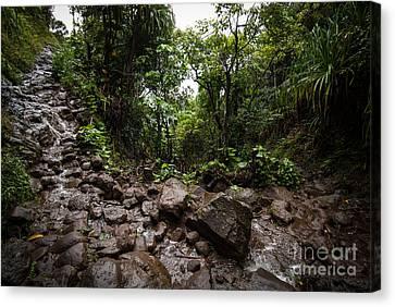 Kalalau Trail Na Pali Coast Canvas Print