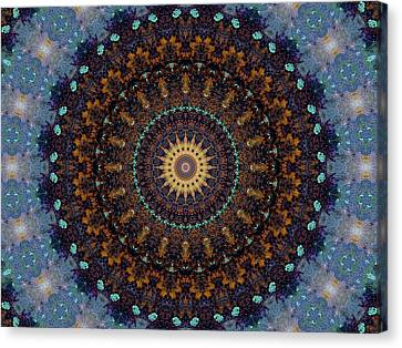 Kaleidoscope 1 Canvas Print by Tom Druin