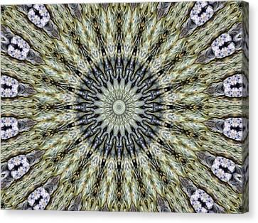 Kaleidoscope 6 Canvas Print by Tom Druin