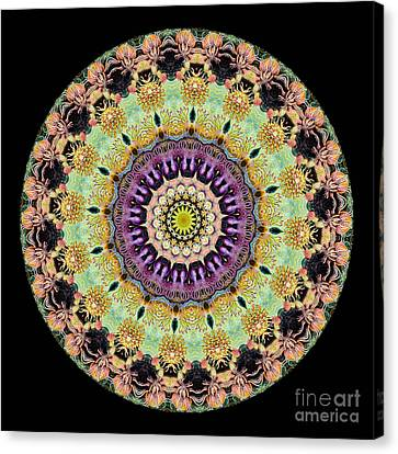 Kaleidoscope Ernst Haeckl Inspired Sea Life Series Canvas Print by Amy Cicconi