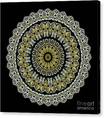 Kaleidoscope Ernst Haeckl Sea Life Series Steampunk Feel Canvas Print