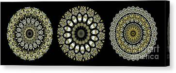 Metalic Canvas Print - Kaleidoscope Ernst Haeckl Sea Life Series Steampunk Feel Triptyc by Amy Cicconi