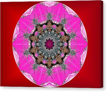 Kaleidoscope Canvas Print by Mike Breau