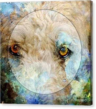 Kaliedoscope Eyes Canvas Print by Judy Wood
