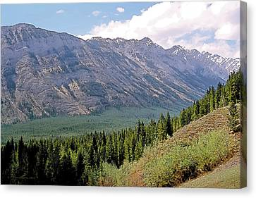 Kananaskis After The Rain 2 Canvas Print by Terry Reynoldson