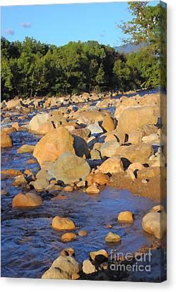 Kancamagus River - New Hampshire Canvas Print